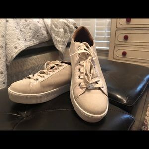 Coach suede sneakers used but in great condition